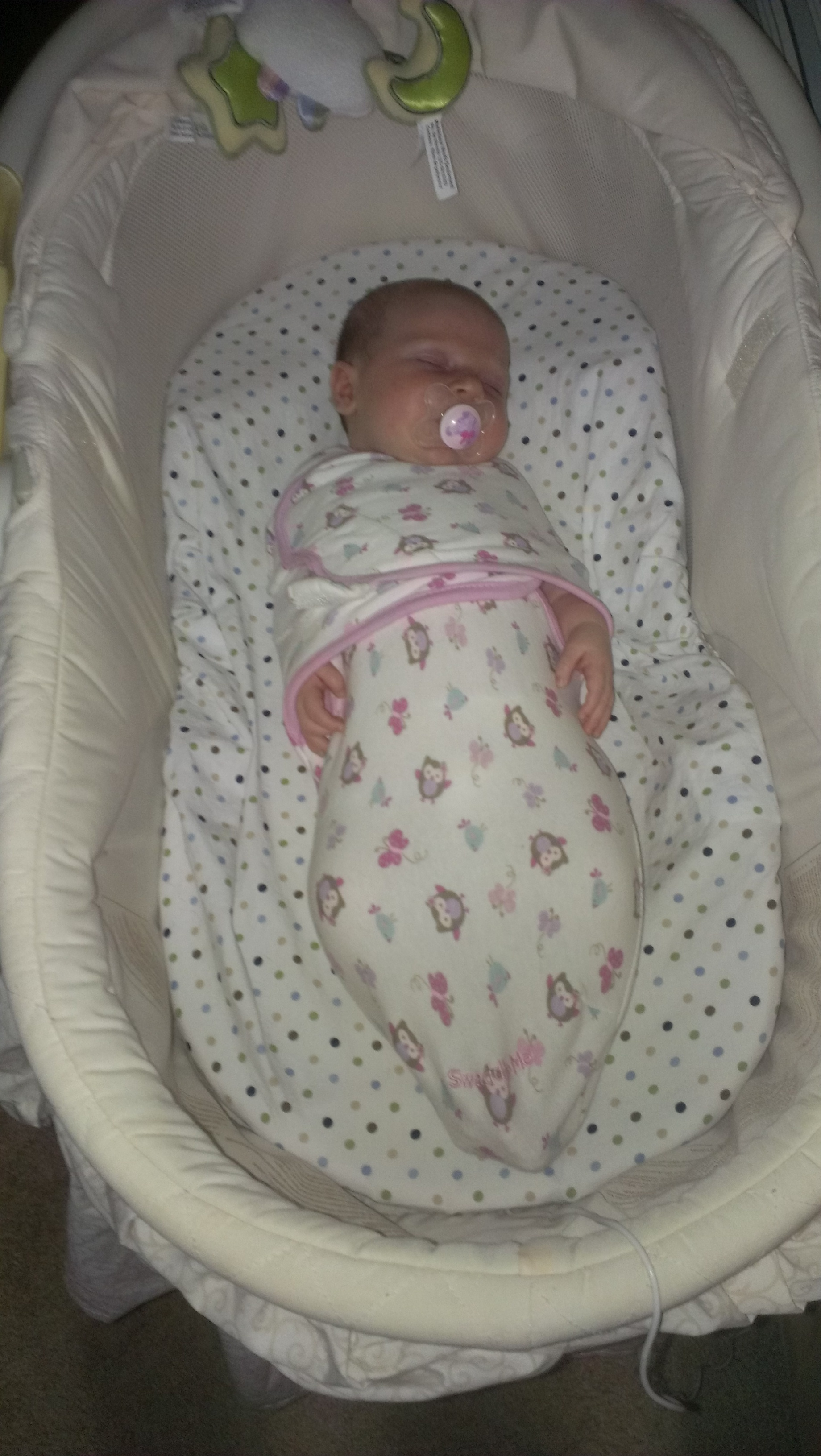 Maggie in a Swaddler (age approx one month)
